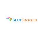 BlueRigger Discounts