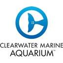 Clearwater Marine Aquarium Discounts