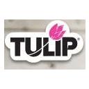 Tulip Discounts