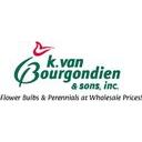 Van Bourgondien Dutch Bulbs Discounts