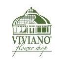 Viviano Discounts