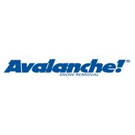 Avalanche coupons