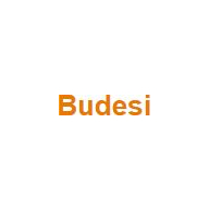 Budesi coupons