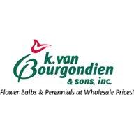 Van Bourgondien Dutch Bulbs coupons