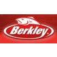 Berkley student discount