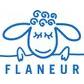 Flaneur student discount