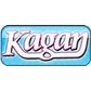 Kagan Cooperative Learning coupons