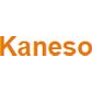 Kaneso student discount