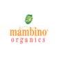 Mambino Organics coupons