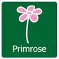 Primrose coupons