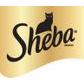 Sheba coupons