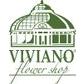 Viviano student discount