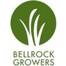 Bell Rock Growers Discounts