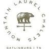 Mountain Laurel Chalets Discounts