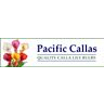 Pacific Callas Discounts